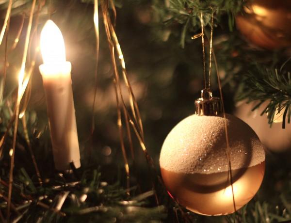19 december – Julgranar