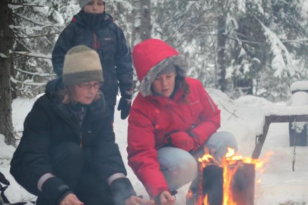 2:a advent – Mys i skogen